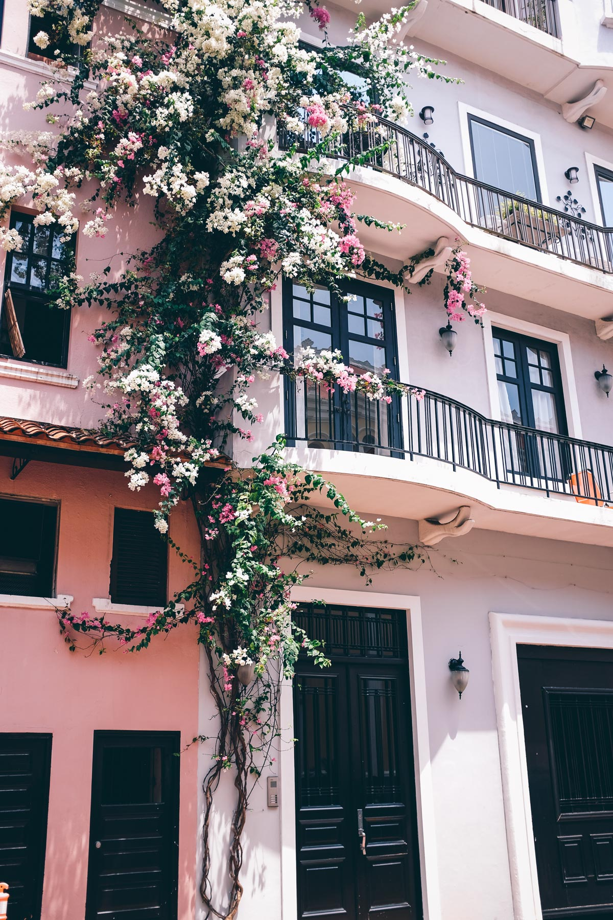 Jess Ann Kirby grabs a photo of the beautiful flowers on building fronts in Casco Viejo, Panama City