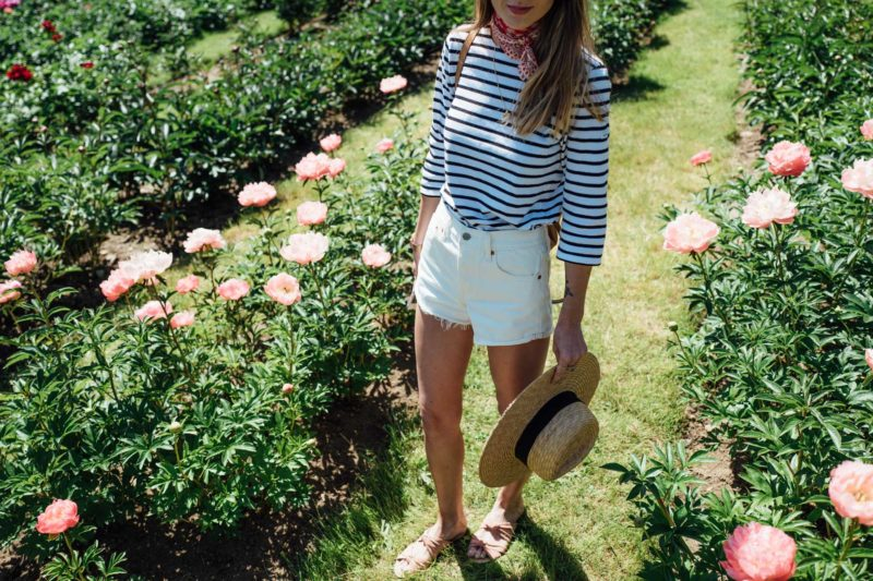 Day Trip to Little Compton to Visit a Peony Farm