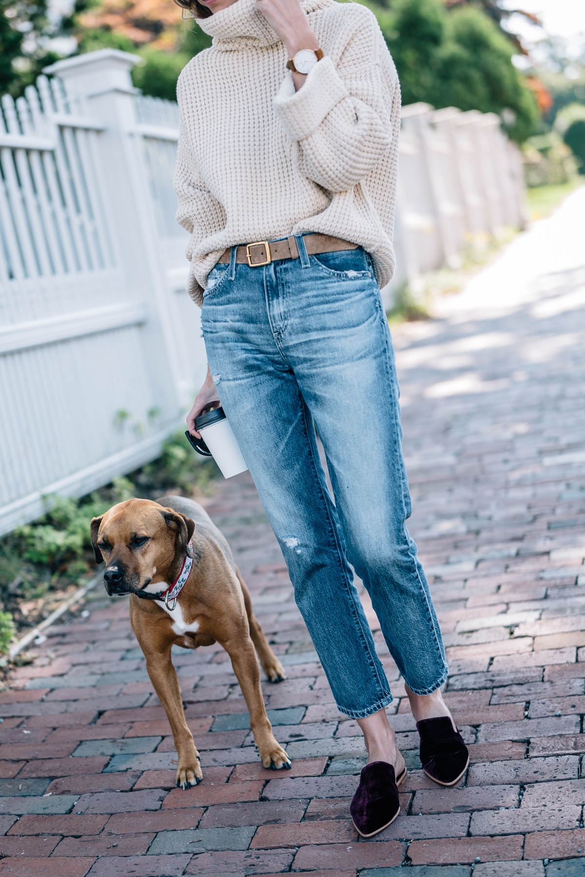 Jess Ann Kirby's fall style in a chunky knit turtleneck sweater, rag and bone leather belt and madewell velvet mules
