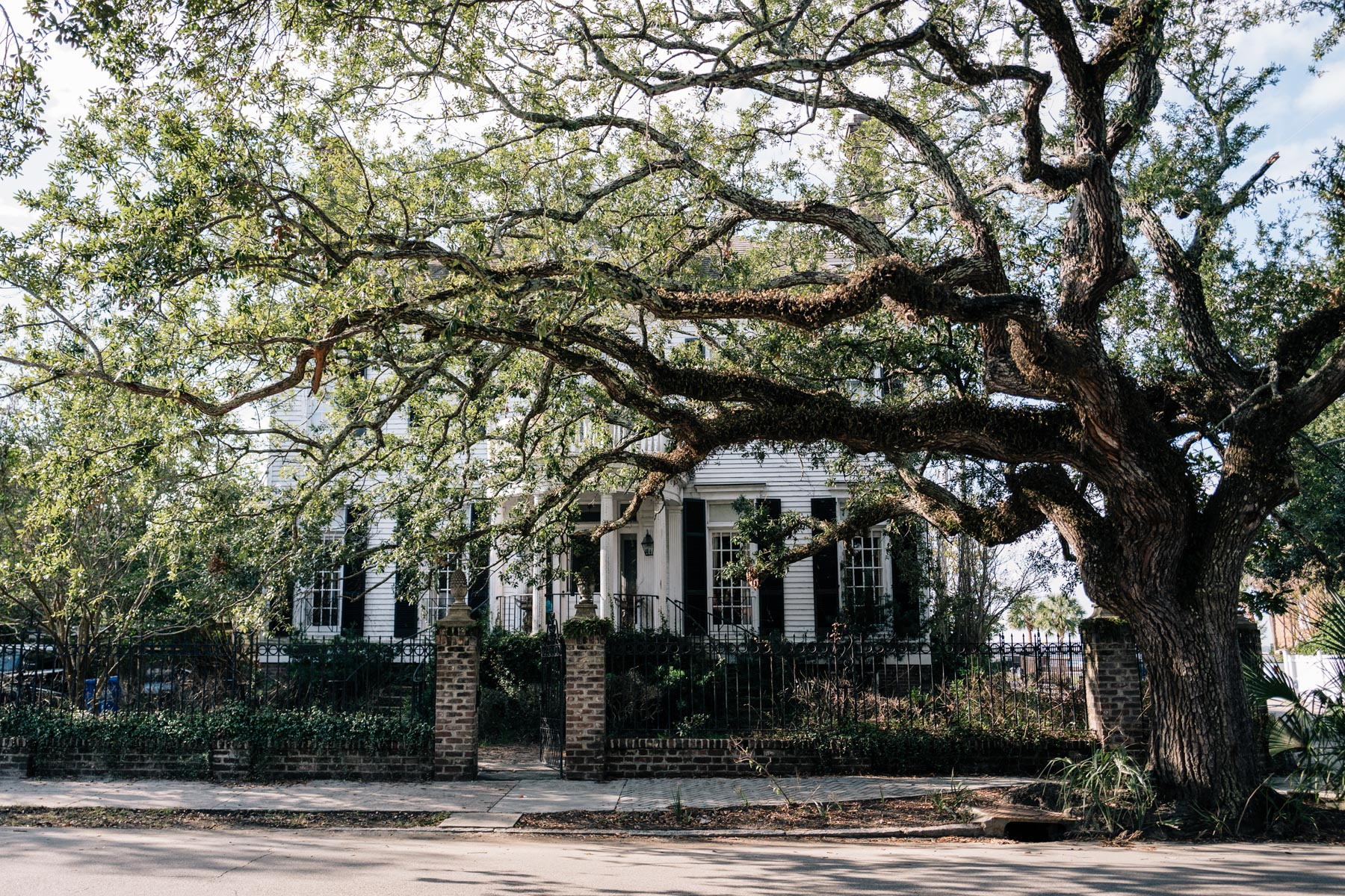 The architecture of Charleston South Carolina's historic homes in the South of Broad neighborhood is worth a visit