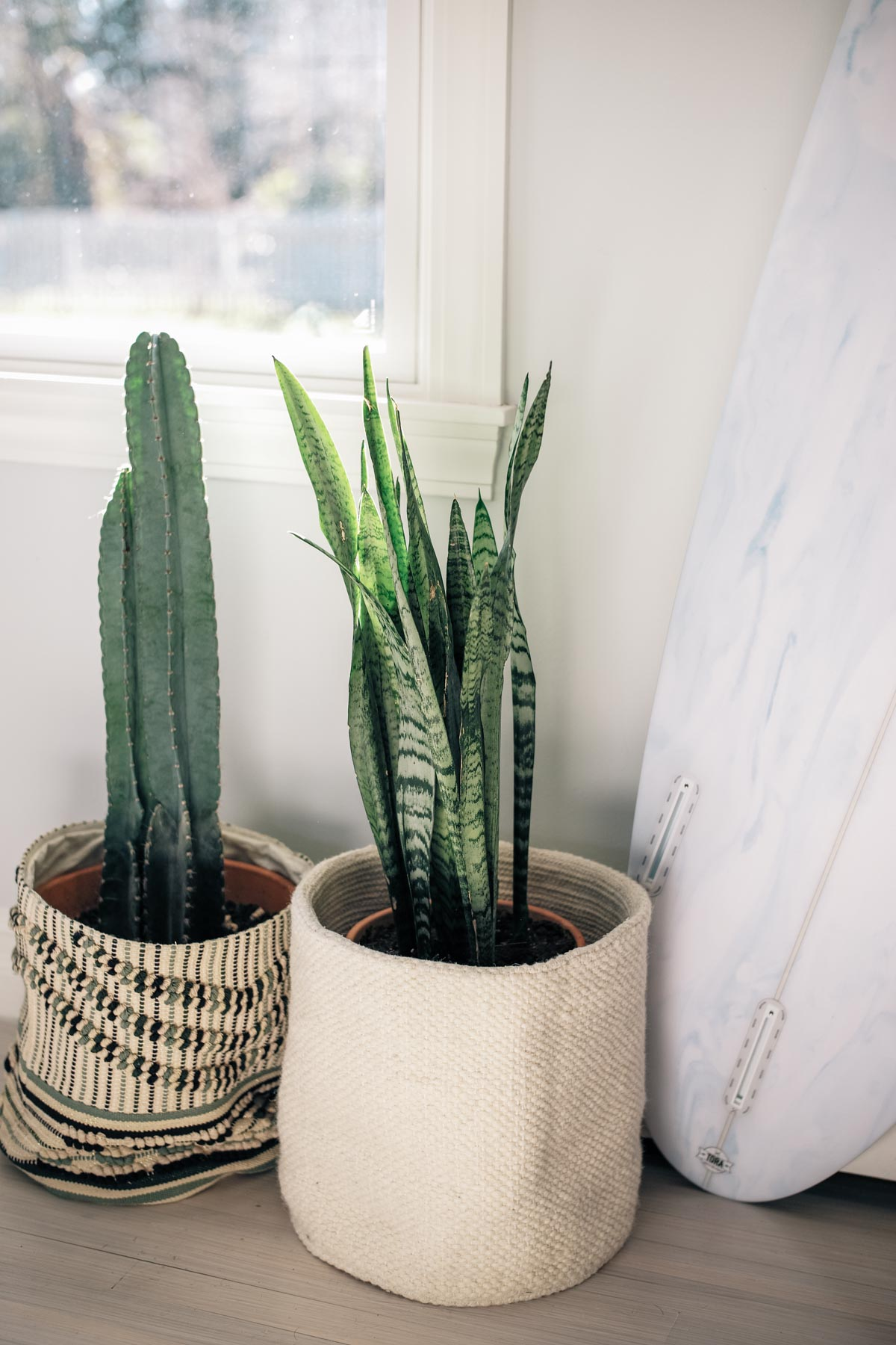 Jess Ann Kirby uses woven planters as home decor